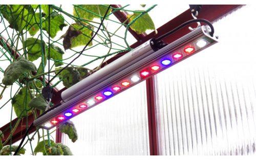growlight 30 w 500x313 - LED Pflanzenleuchte GrowLight, 30 W