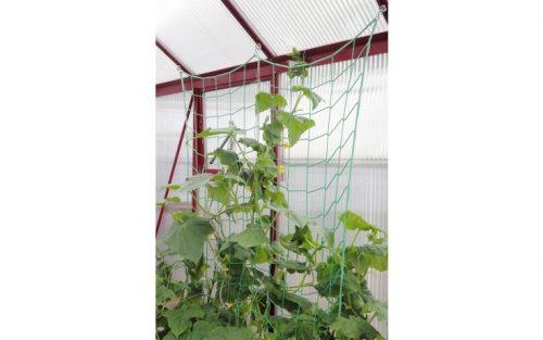 k bepflanztes gurken ranknetz 500x313 - Gurkenranknetz