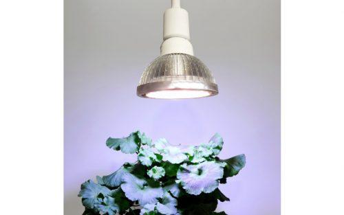 standard 18 watt 500x313 - LED Pflanzenleuchte Standard, 18 W