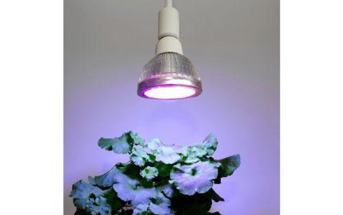 wachstum 18 watt 500x313 - LED Pflanzenleuchte Wachstum, 18 W