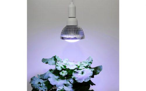 winter 18 watt 500x313 - LED Pflanzenleuchte Winter, 18 W