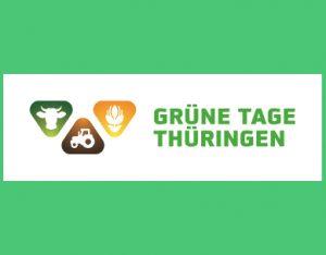 Gewächshaus, Grüne Tage Thüringen 300x234 Hochbeete, Home  - Stabil & Hochwertig