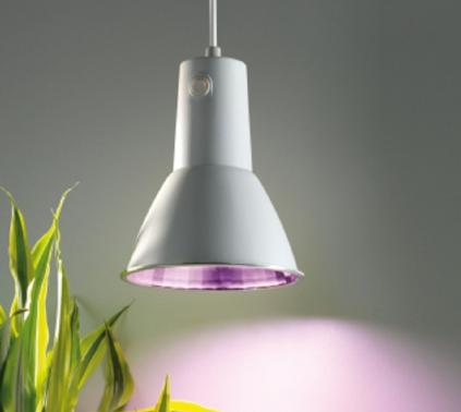 """Planzenleuchte - BioGreen Energiesparlampe """"L15"""""""